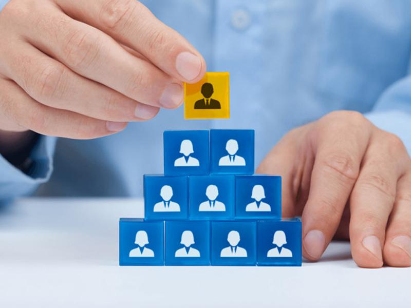 Chức năng và vai trò của ngành nghề Quản trị nhân sự